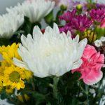 格安葬儀における花の種類は?選び方・手配方法ご紹介